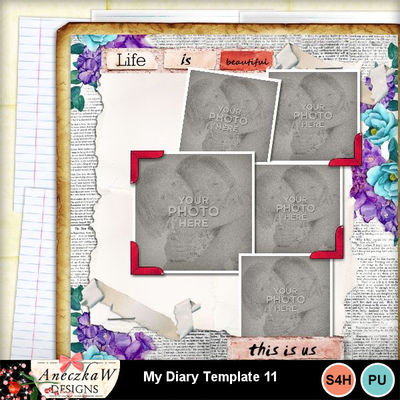 My_diary_template11-001