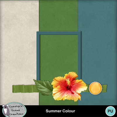 Csc_summer_colour_bt_wi