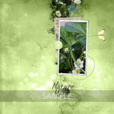Si_bees_butterflies_layout_1_web