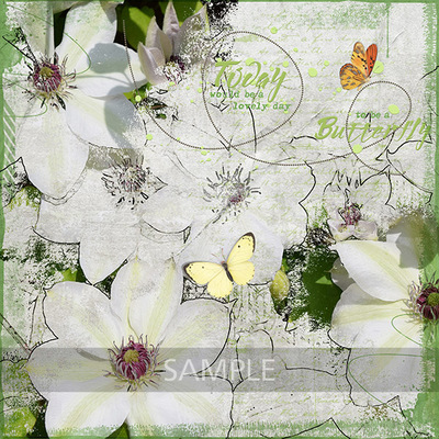 Si_bees_butterflies_layout_3_web