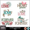 Aimeeh_affairtoremember_titles_small