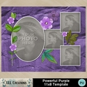 Powerful_purple_11x8_template-001a_small