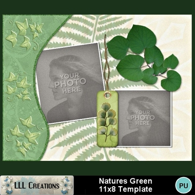 Natures_green_11x8_template-001a