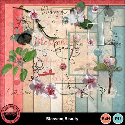 Blossombeauty1