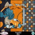 Thankfulsampler_mmnovblogtrain_small