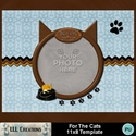 For_the_cats_11x8_template-001a_small