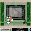 Irish_pride_11x8_template-001a_small
