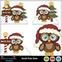 North_pole_owls--tll_small