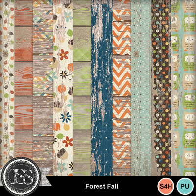 Forest_fall_wood_papers