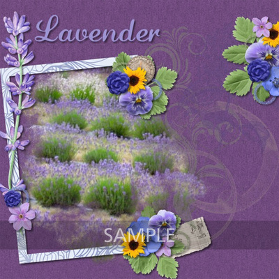 600-adbdesigns-provence-lavender-maureen-01__presl_spring_flowers_set_2