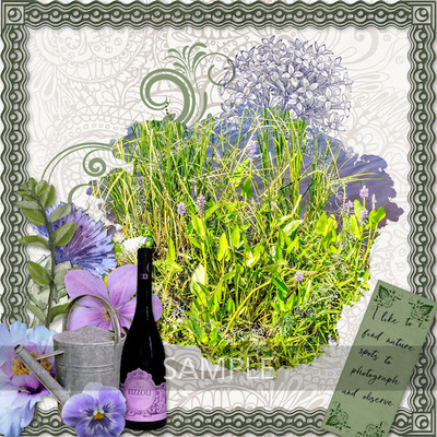 600-adbdesigns-provence-lavendar-nancy-01