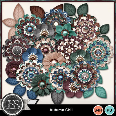 Autumn_chill_flowers