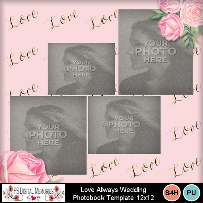 Love_always_wedding_pb7