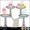 Pink_bird_bath--tll_small