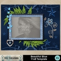 Beautiful_blue_11x8_template-001a_small