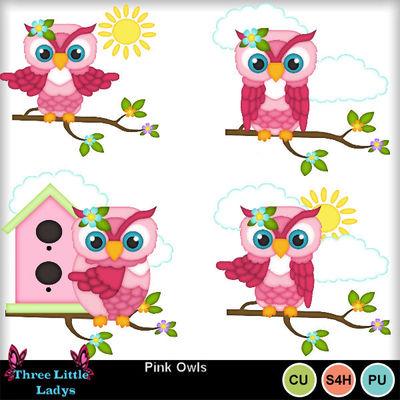 Pink_owls--tll
