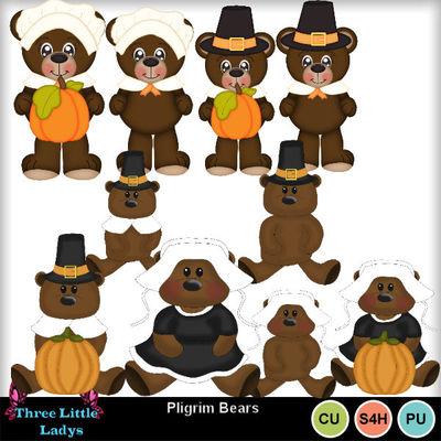Pilgrim_bears_--tll