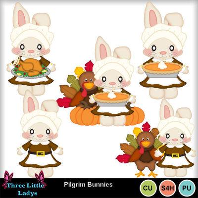 Pilgrim_bunnies_--tll