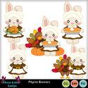 Pilgrim_bunnies_--tll_small