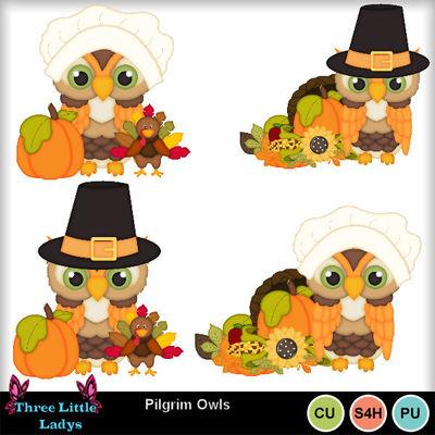 Pilgrim_owls--tll
