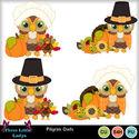 Pilgrim_owls--tll_small
