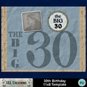 30th_birthday_11x8_template-001a_small