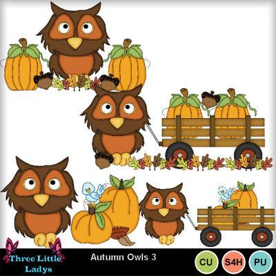 Autumn_owls_3--tll