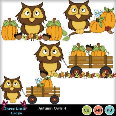 Autumn_owls_4--tll