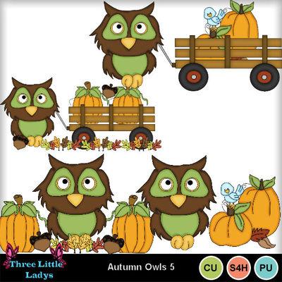 Autumn_owls_5--tll