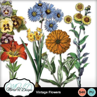 Vintage_flowers_001