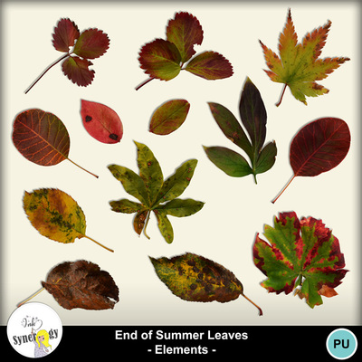 Si_end-of-summer-leaves_pvmm-web