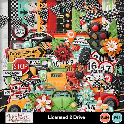 Licensed2drive_01