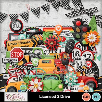 Licensed2drive_03