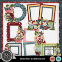 Butterflies_and_bluejeans_cluster_frames_small