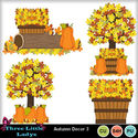 Autumn_decor_3--tll_small