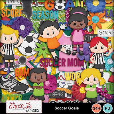Soccergoals4