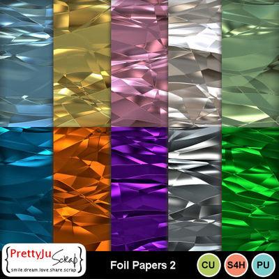 Foil_pp2