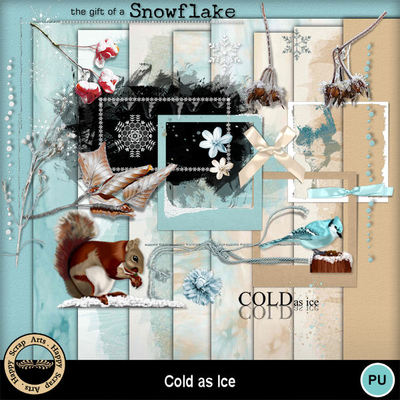 Coldasice__3_