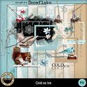 Coldasice__3__small