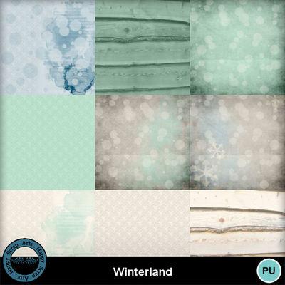 Winterland__2_