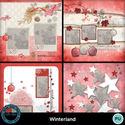 Winterland__9__small