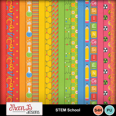 Stemschool3