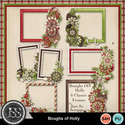 Boughs_of_holly_cluster_frames_small