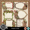 Boughs_of_holly_journal_clusters_small
