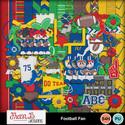 Footballfan1_small