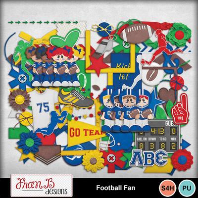 Footballfan2