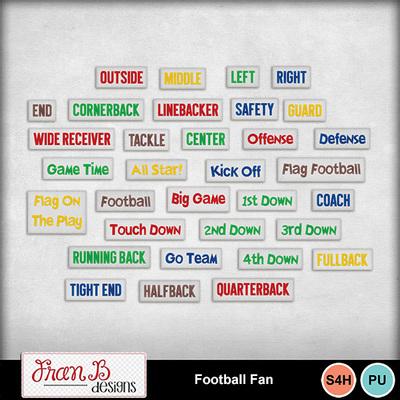 Footballfan4