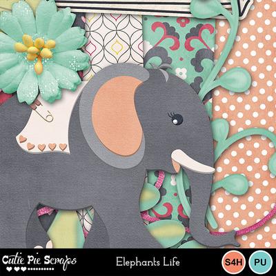 Elephantslife3