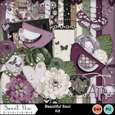 Spd_beautiful-soul-kit