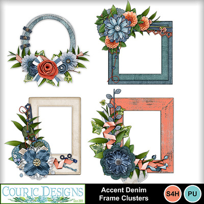 Accent_denim_frame_clusters